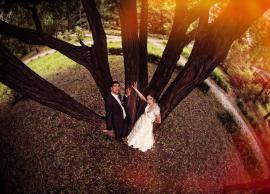 Свадьба Метаксия,Гурген 13.06.2014 фото 4