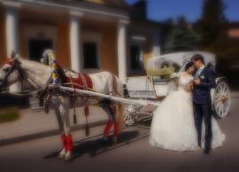 Свадьба Алина,Женя 14.06.2014 фото 4