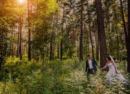 Свадьба ЛЕНА,ДИМА 25.07.2014 фото 13