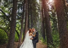 Свадьба Марина,Евгений 01.08.2015 фото 1