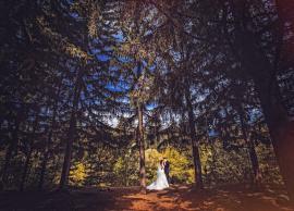 Свадьба Марина,Евгений 01.08.2015 фото 8
