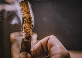 manillaclub   Чемпионат по медленному курению трубки и сигары - 2016 11.11.2016 фото 4